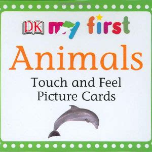 my touch and feel picture cards things that go my 1st t f picture cards books touch feel picture cards