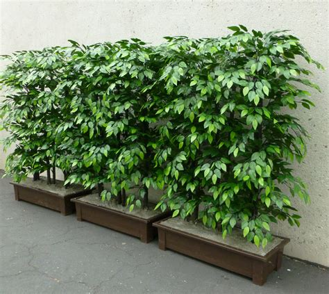 uv exterior commercial artificial plants and plantscaping
