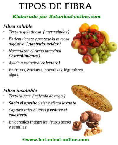 alimentos fibra soluble tipos de fibra y beneficios fibra soluble e insoluble