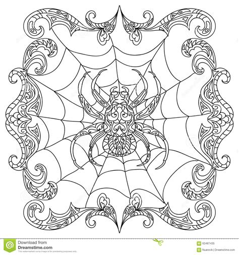 spider zentangle coloring page stock illustration image