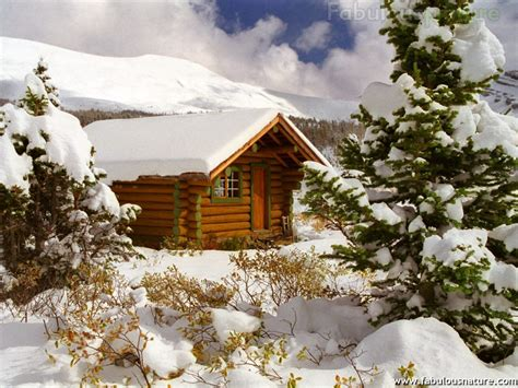 Winterizing A Cabin by Winter Pictures Cozy Log Cabin Mount Assiniboine