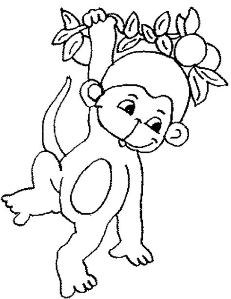 cute baby monkey hanging on tree coloring page for kids