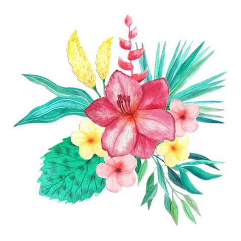 tropical pattern png tropical watercolor bouquet 9 greeting card for sale by
