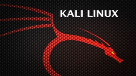 kali linux tutorial network kali linux commands