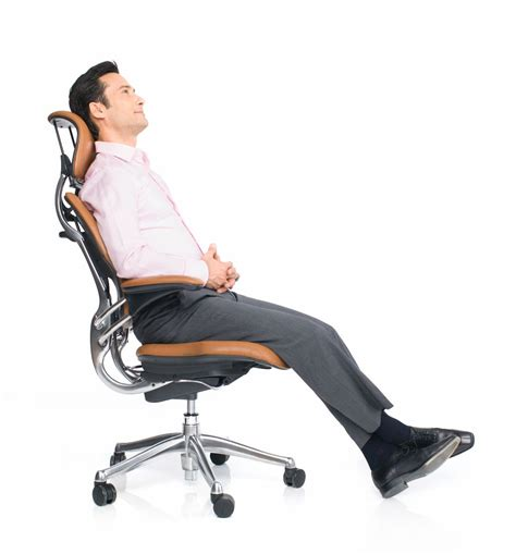 Niels Diffrient Freedom Chair by Freedom Task Chair With Headrest Ergonomic Seating From Humanscale