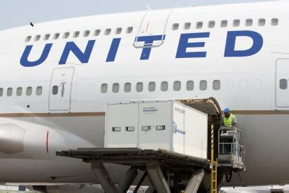 united boxing clever to give perishable freight customers more peace of mind the loadstar