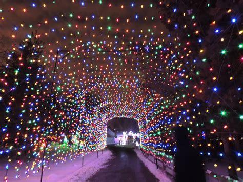 lights detroit zoo lights at the detroit zoo january 2014 detroit mi