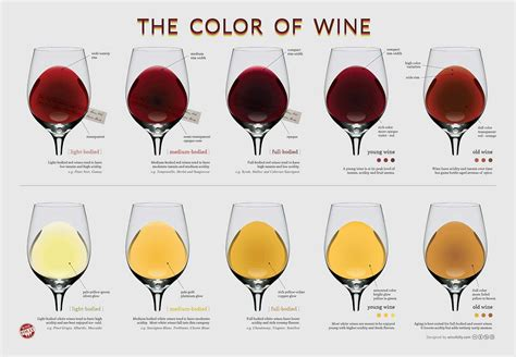 wine pairing the basic knowledge needed to feel confident pairing food and wine books wine characteristics la du vin