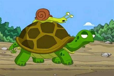 imagenes de animales lentos 191 qu 233 es el cine quot lento quot diariolacamara com