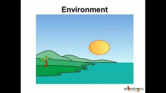 Essay On Our Environment For Class 6 by Science Environment Pollution