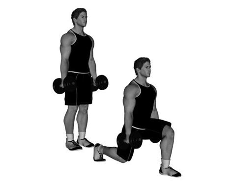 knee on bench dumbbell dumbbell lunge bodybuilding wizard