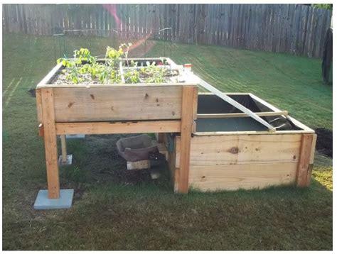 backyard solar powered aquaponics system http www