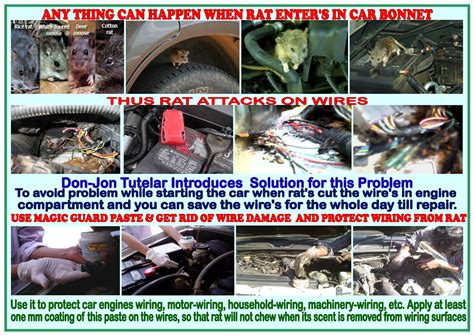 how to prevent car wires from rats