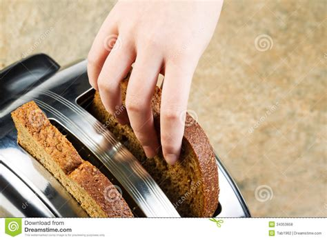 Toaster Pastry Preparing To Make Toast Stock Photo Image Of Utensil