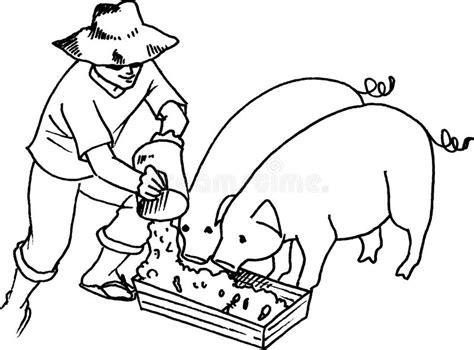 alimentazione maiale alimentazione maiale illustrazione di stock
