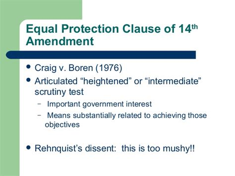14th amendment section 1 meaning 31 gender discrimination