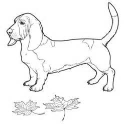 coloriage basset hound coloriages 224 imprimer gratuits