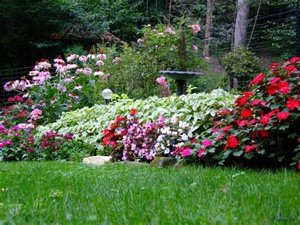 Perennial Flower Garden Pictures Landscaping Gardening Perennial Flower Garden Ideas