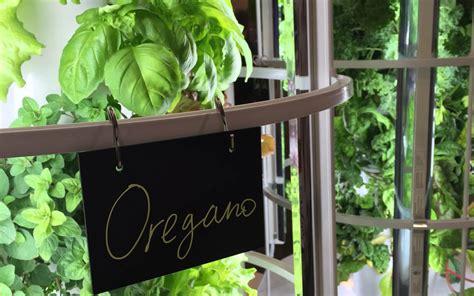 ultimate indoor herb garden   reap huge harvests