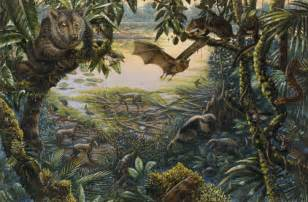 National Geographic Wall Mural 642570 ancient ecosystem at messel with animals in rain