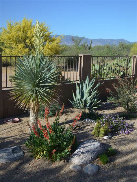 Landscape Architect Tucson Landscaping Awards Tucson Az Sonoran Gardens Inc