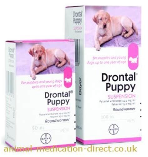 drontal puppy drontal puppy suspension 50ml 100ml products animal medication direct