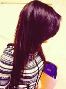 plum hair colorjpg brown hairs