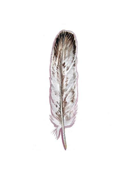 eagle feather tattoo symbolism tatoo pinterest eagle collection of 25 native american feather eagle tattoos