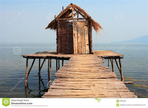 no water in house old tree house in water stock image image 2965561