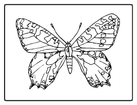 butterfly rainbow coloring page free butterfly and rainbow coloring pages