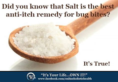 are salt ls really good for you best anti itch remedy simply put water on the bite and