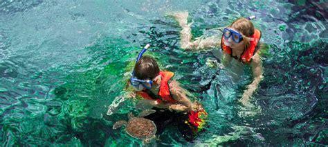 boatswain s adventure marine park planning disney cruise disneycruise november 2012