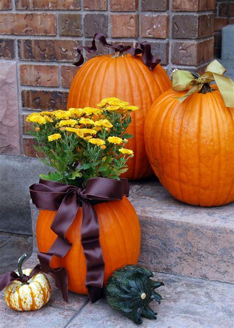 Pumpkin Planter by 15 Ideas Pink Polka Dot Creations