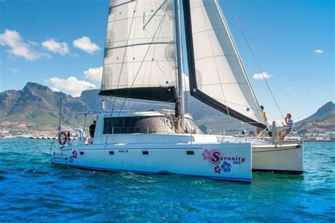 catamaran cape town tours 2 hour table bay cruise cozier luxury tours