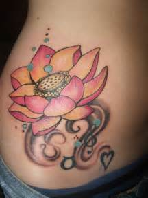 Lotus Flower Side Lotus Flower On Side