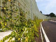 barriere antirumore giardino progettazione giardino vivaio rottensteiner bolzano