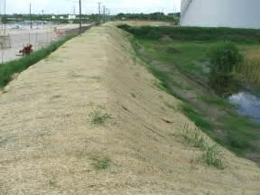 erosion blanket buffel grass seed company