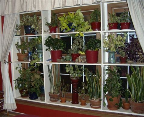 Inside Window Sill Plant Shelf Window Plant Shelves Greenhouse Indoor Garden