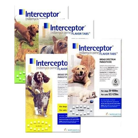 heartworm medicine for puppies interceptor for dogs cats interceptor heartworm medicine