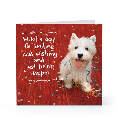 printable birthday cards dogs smiling happy dog birthday cards hallmark card pictures
