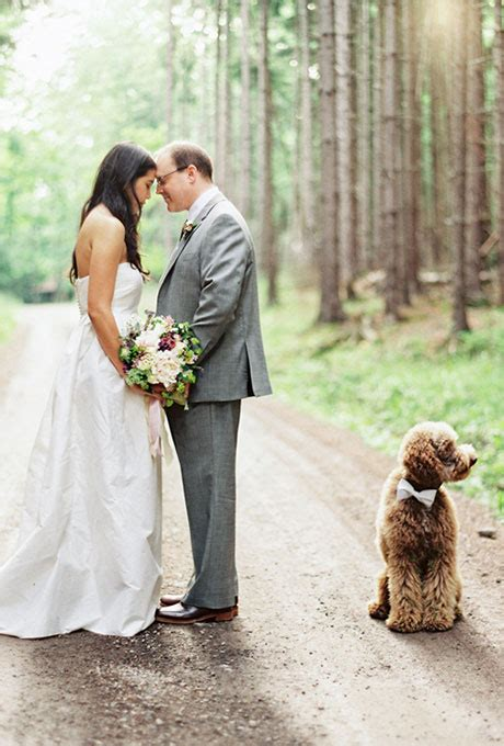 Wedding For Your Beloved Pet by Ways To Include Pets In Your Wedding Brides