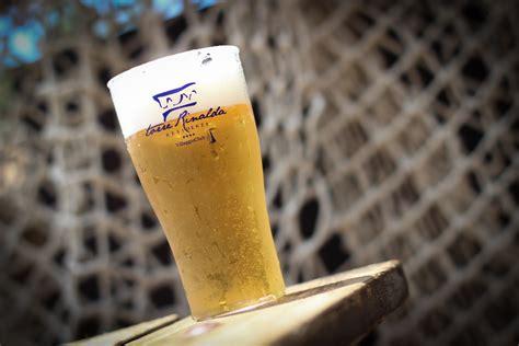 bicchieri plastica birra bicchieri da birra in plastica bicchieri in policarbonato