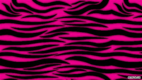 pink and zebra print border free wallpaper purple zebra wallpaper desktop