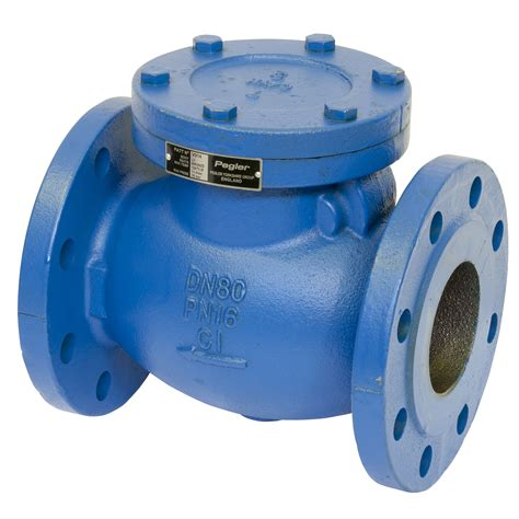 swing check valve pegler
