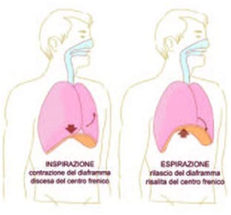 tutorial respirazione yoga tutorial la respirazione e il diaframma 2