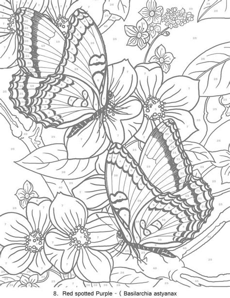 Butterfly Designs Coloring Book