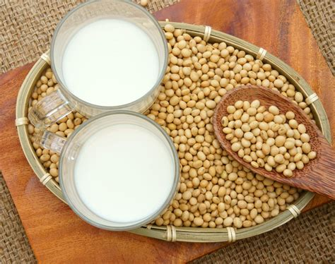 alimentos de soya pueden proteger  mujeres menopausicas contra la osteoporosis