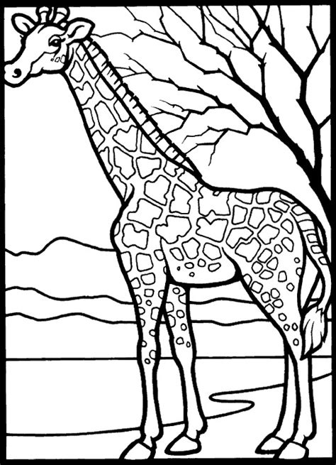 Kids N Fun Com 45 Coloring Pages Of Giraffe Giraffe Coloring Pages Printable