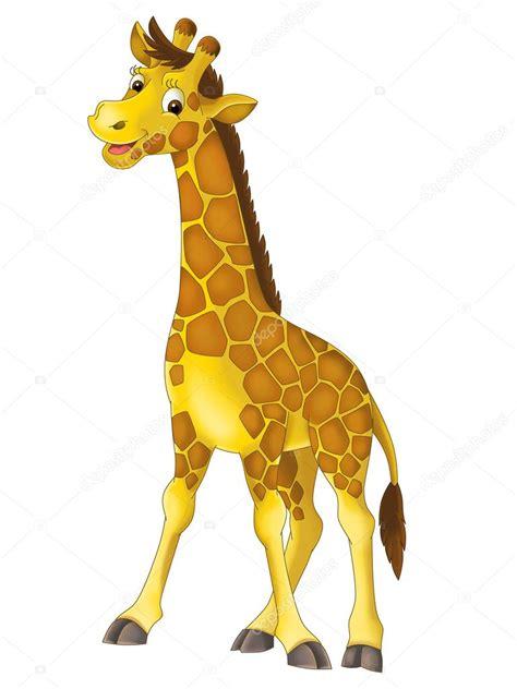 imagenes de jirafas para ninos dibujos animados jirafa ilustraci 243 n para los ni 241 os