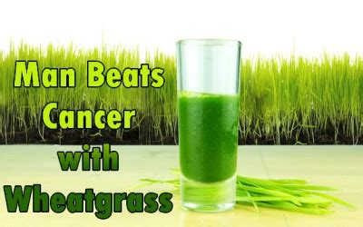 Wheatgrass Detox Thc by 74 Year With Weeks To Live Beats Cancer With Wheatgrass